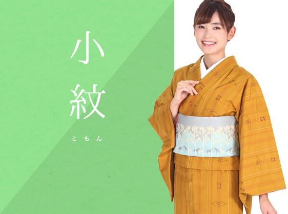 #小紋 #きもの羽衣